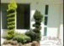 Casa Sola En Venta, Las Palomas