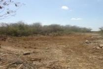 Land Of 25 Hectares 5 Minutes From Mueblero Park Uman, Yucatan