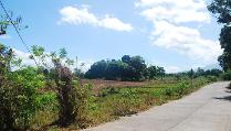 Roadside Lot For Sale, Near Naga City