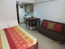 Brand New Furnished Studio Condo Near It Park For Rent