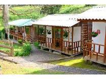 Cabaña Selva Verde Salento