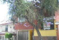 Renta - Rcr7742, Rincon Del Valle - Tlalnepantla De Baz Estado De México