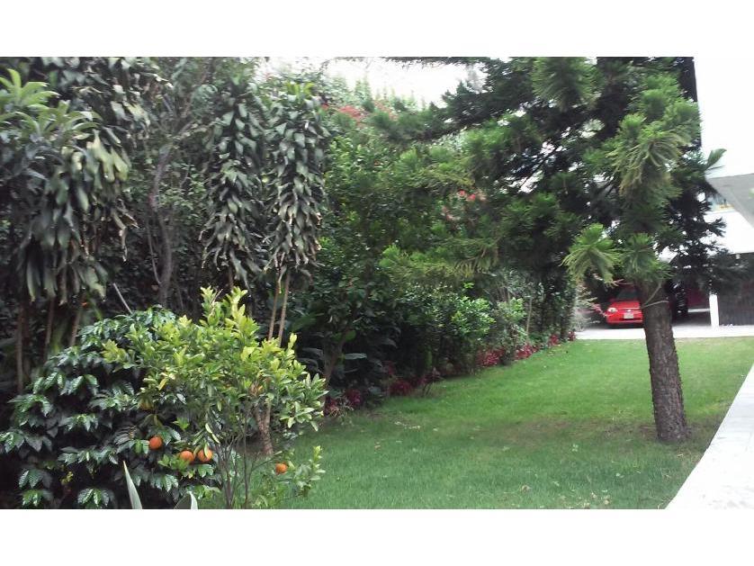 Departamento en Venta en Miguel A De Quevedo, Colonia Del Carmen, Coyoacán