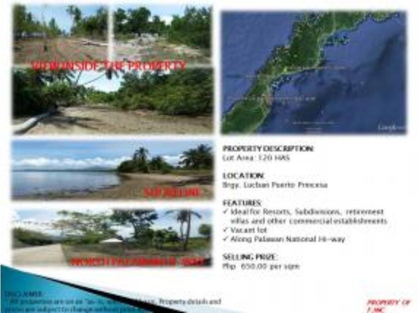 31 Beach Lots For Sale In Palawan Mimaropa Region 4 B