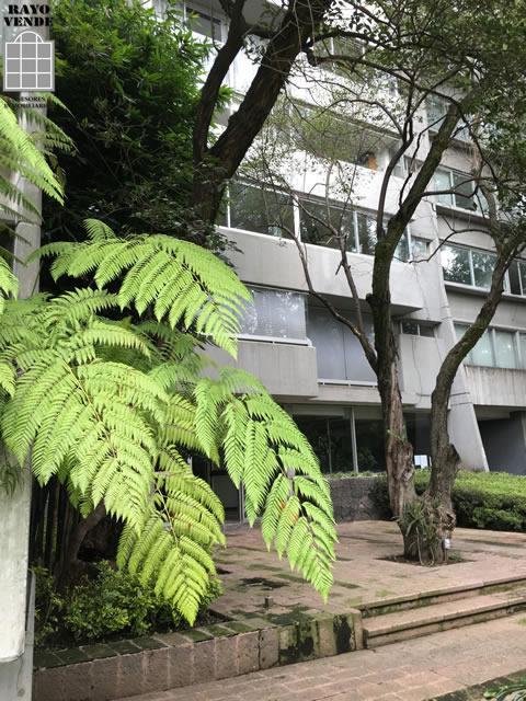 Departamento en Renta en Río San Angel, Guadalupe Inn, Álvaro Obregón